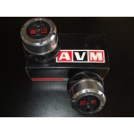 Volnobežné náboje AVM pre PATROL GR (445)